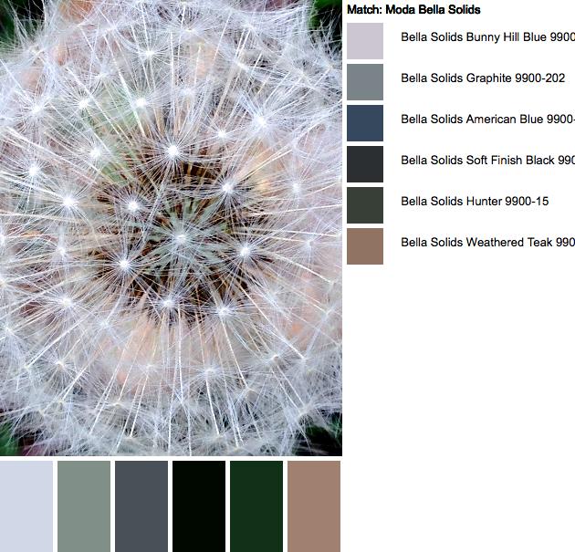 IMG_7073-palette-2